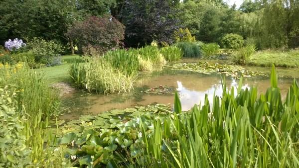 Ponds lakes carp aquaponics courses sustainable for Farm pond maintenance