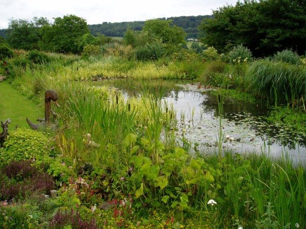 Ponds lakes carp aquaponics courses sustainable aquaculture aquavision sustainable - Build pond wildlife haven ...